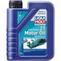 Marine Fully Synthetic 2T aceite de motor